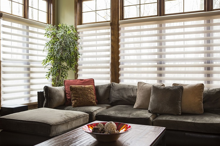 What Blinds to Choose for Your Home Improvement Project in Sydney