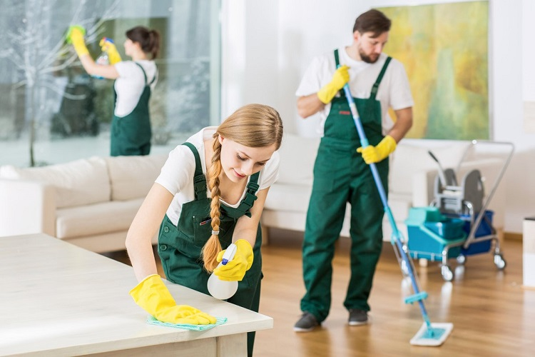 The best kind of cooperation and preparations for a cleaning session!